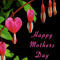 Mothers Day Card 6 by Michael Peychich