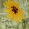 Mother's Day Sunflower by Teresa Wilson