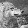 Mother's Love - Black And White by Lucie Bilodeau