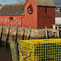 Motif 1 At Christmas, Rockport, Ma by Nicole Freedman