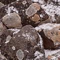 Mottled Stones by Irwin Barrett