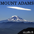 Mount Adams Poster  by David Lee Thompson