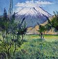 Mount Ararat North Eastern Anatolia Turkey 2006  by Enver Larney