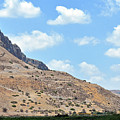 Mount Arbel 5 by Lydia Holly