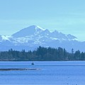 Mount Baker From The Spit by James Johnstone
