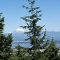 Mount Baker by Linda Kerkau