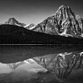 Mount Chephren Reflection by Eduardo Tavares