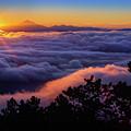Mount Constitution Sunrise by Inge Johnsson