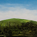 Mount Coolum by Joe Michelli