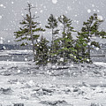 Mount Desert Narrows Snowscape by Marty Saccone