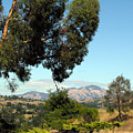 Mount Diablo by Ken Young
