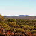Mount Gibson Station To Mt Singleton by Tony Brown