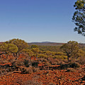 Mount Gibson Station Wa by Tony Brown