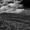 Mount Greylock In Black And White by Raymond Salani III