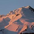 Mount Hood Sunset Glow by Tammy Hankins