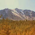 Mount Lassen In Autumn by Frank Wilson