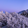 Mount Liberty Blue Hour Panorama by Chris Whiton
