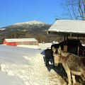 Mount Monadnock From East Hill Farm by John Burk