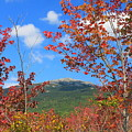Mount Monadnock Red Maple Foliage by John Burk