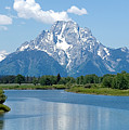 Mount Moran At Oxbow Bend by Max Waugh