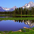 Mount Moran Tetons Nat'l Park by Alan Lenk