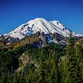 Mount Rainier - Eastside by Michael Sedam
