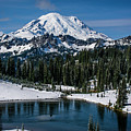 Mount Rainier - Tipsoo Lake by Michael Sedam