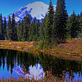 Mount Rainier And Tipsoo Lake by David Patterson