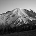 Mount Rainier Bw  by Michael Ver Sprill