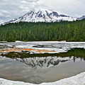 Mount Rainier From Reflection Lakes by Don Mercer