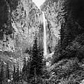 Mount Rainier National Park by Granger