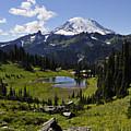 Mount Rainier by Pelo Blanco Photo