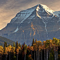 Mount Robson by Mark Duffy