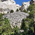 Mount Rushmore II by Teresa Zieba