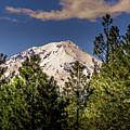 Mount Shasta by Blake Webster