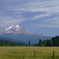 Mount Shasta by Donna Blackhall