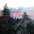 Mount Shasta Forest Sunrise by Kyle Hanson