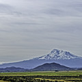 Mount Shasta Majesty by Mary Chris Hines