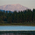 Mount St. Helens by Robert J Caputo