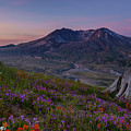 Mount St Helens Spring Colors by Mike Reid