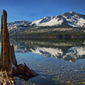 Mount Tallac And Fallen Leaf Lake by Mitch Shindelbower