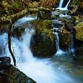 Mount Tam Waterfall by Christine Dorfer