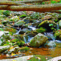 Mountain Appalachian Stream 2 by The American Shutterbug Society
