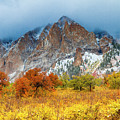 Mountain Autumn Color by Teri Virbickis