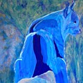 Mountain Bobcat by Donald J Ryker III