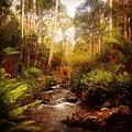 Mountain Creek by Glen Johnson