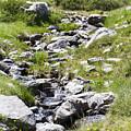 Mountain Creek by Lasse Ansaharju