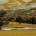 Mountain Farm With Pond In Artistic Version by Doug Berry