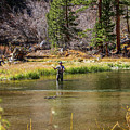 Mountain Fisherman by Tommy Anderson