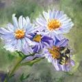 Mountain Flowers by Lori Brackett